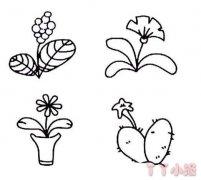 小花朵盆栽简笔画怎么画简单又漂亮
