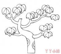 手绘枫树简笔画图片教程简单又漂亮