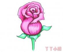 玫瑰花的画法步骤教程涂色简单又漂亮