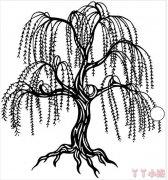 柳树垂柳简笔画怎么画简单又漂亮