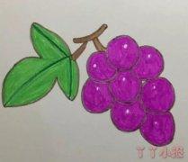 葡萄怎么画涂色带步骤 葡萄简笔画图片