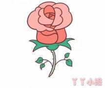 玫瑰花简笔画涂色带步骤简单又漂亮