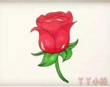 红色玫瑰花怎么画简单又漂亮涂色带步骤图