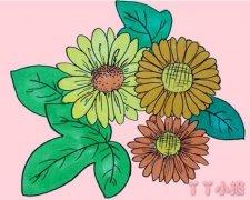 彩色雏菊怎么画简单又漂亮带步骤教程