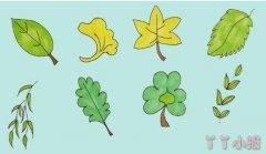 8种树叶简笔画涂色简单又漂亮带步骤