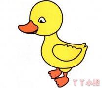 可爱的小鸭子简笔画图片 涂色小鸭子怎么画