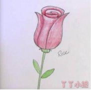 红色玫瑰花怎么画简笔画步骤涂色简单漂亮