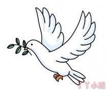和平鸽简笔画涂色 和平鸽怎么画简单好看
