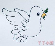 卡通和平鸽怎么画涂色简单又可爱