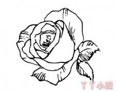 怎么画玫瑰花简笔画 手绘玫瑰花的画法简单又漂亮