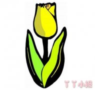 怎么画彩色郁金香简笔画教程简单又漂亮
