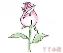 手绘玫瑰花简笔画怎么画简单又漂亮