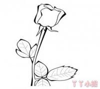 七夕情人节玫瑰花的画法图解教程简单又漂亮