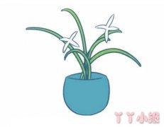 怎么画兰花的画法步骤教程涂颜色