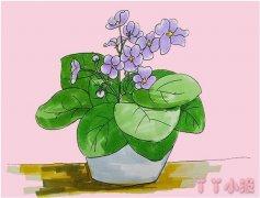 教你一步一步手绘紫罗兰简笔画涂色简单漂亮