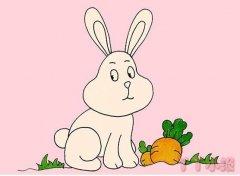 教你一步一步画卡通小白兔简笔画涂色简单