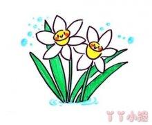 教你怎么画水仙花简笔画步骤教程