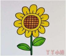 教你怎么画向日葵简笔画步骤教程涂颜色