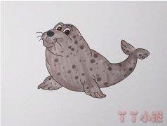 教你怎么画海豹简笔画步骤教程涂颜色