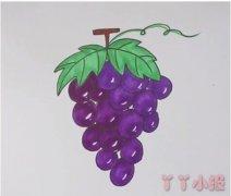 教你怎么画葡萄简笔画步骤教程涂色