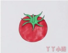 教你怎么画西红柿简笔画步骤教程涂颜色