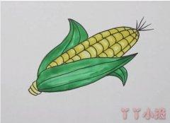 简笔画玉米棒的画法步骤教程涂色简单好看