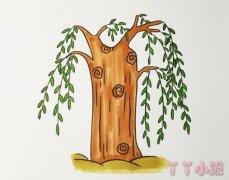 怎么画柳树简笔画步骤教程涂色简单漂亮