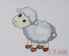 卡通小绵羊怎么画带步骤教程涂色简单可爱