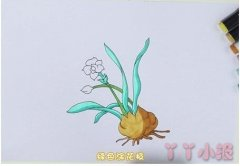 怎么手绘松树简笔画步骤教程涂色简单好看
