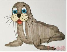 简笔画海狮的画法步骤教程涂色简单好看