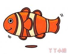 怎么画小丑鱼简笔画教程简单又可爱