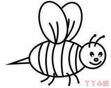 卡通小蜜蜂怎么画简笔画教程简单可爱
