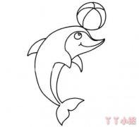顶球小海豚怎么画简笔画教程简单可爱