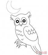 怎么画月光下猫头鹰简笔画教程简单好看