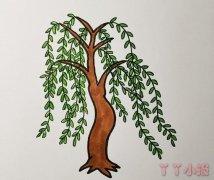 春天柳树垂柳简笔画怎么画简单又漂亮涂色