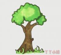 大树简笔画怎么画简单又漂亮涂颜色