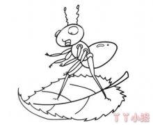 树叶上的蚂蚁怎么画简笔画教程简单可爱