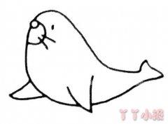 卡通海狮简笔画怎么画图解步骤简单