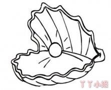 怎么画珍珠贝壳简笔画教程图解简单又漂亮