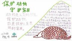 保护动物守护家园手抄报简笔画怎么画简单又漂亮三年级