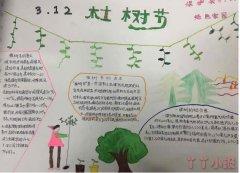 植树节手抄报简笔画怎么画简单又漂亮一等奖一年级手抄报